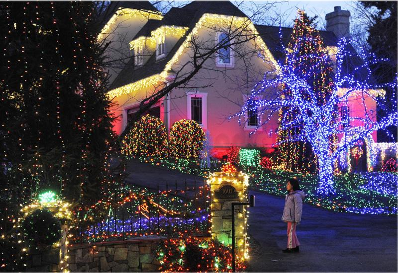 Fairy Lights Outdoor Garden Part - 44: 10M 100 LED Pure White Solar Power String Lights Outdoor Garden Lawn Party  Lamp   EBay